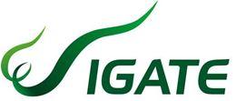 Εικόνα για τον κατασκευαστή IGATE